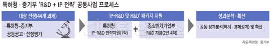 특허청 중기부 R&D+IP전략 공동사업 프로세스 그림입니다